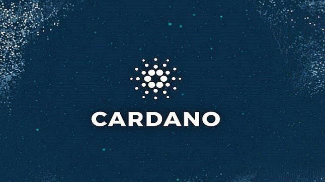 كاردانو تقفز بنسبة 21% في تعاملات الجمعة